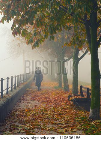 Woman In Black Walking Down The Alley On Misty Autumn Day