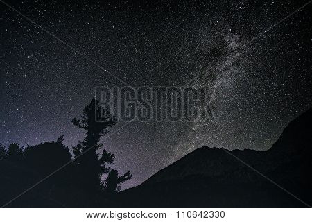 Nightsky In The Sierra Nevada Mountains