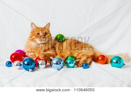 Ginger Cat Lies On Bed Among Christmas Decorations - Bright Colorful Balls.