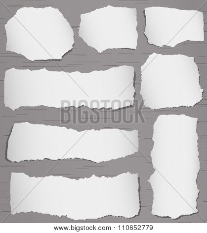 Set of gray torn note papers on background