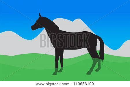 Horse Walks, Eats the Grass. Vector Illustration. EPS10.