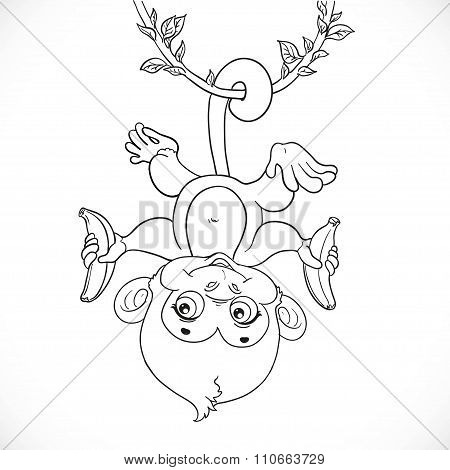 Cute Baby Monkey With Banana Hanging On The Liana Outlined Isola