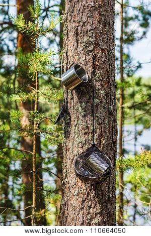Travel Utensils Hanging On A Tree In The Forest