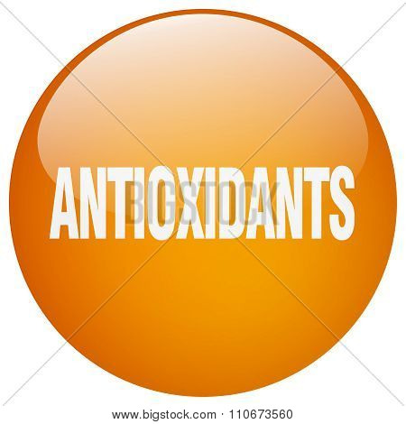 Antioxidants Orange Round Gel Isolated Push Button