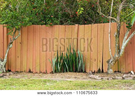 Old Stockade Fence
