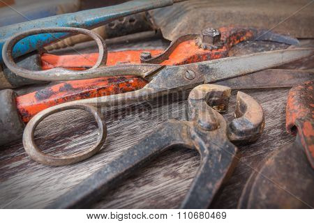 Old Rusty scissor and pincer - Vintage Gardening Tools closeup