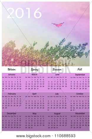 Colorful Butterfly Calendar