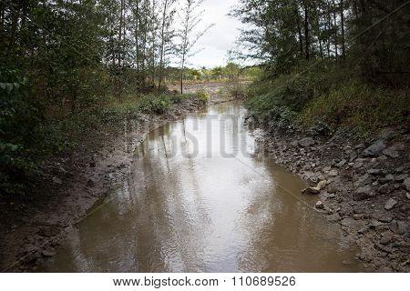 Polluted Stream Borneo