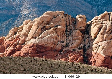 Red Rock Canyon Shapes