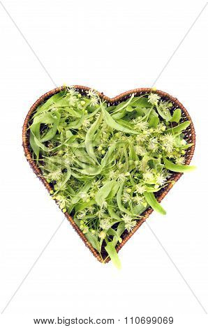 Heart Shaped Wicker Basket With Linden Tree Blossom, Isolated