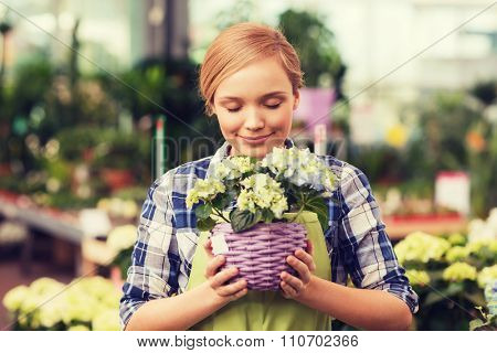 people, gardening and profession concept - happy woman or gardener smelling flowers in greenhouse