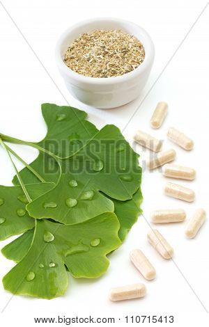 Ginkgo Capsules And Dried Ginkgo