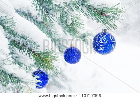 Christmas Balls On A Pine Tree Frosty In The Snow. Christmas Winter Background.