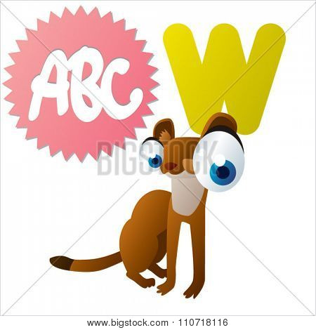 Vector cute funny colorful alphabet animals: W is for Weasel