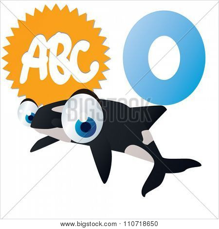 Vector cute funny colorful alphabet animals: O is for Orca
