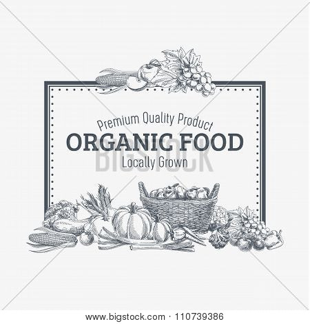 Vector background with hand drawn organic food.