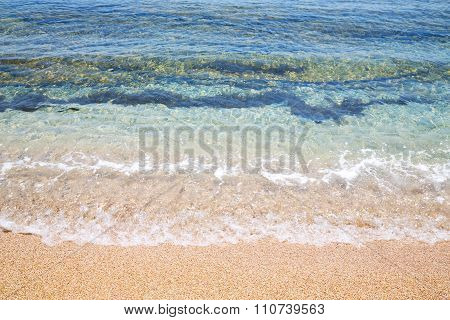 Tide Foam And Froth In The