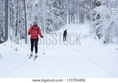 Woman Cross-country Skiing In The Snowy Forest