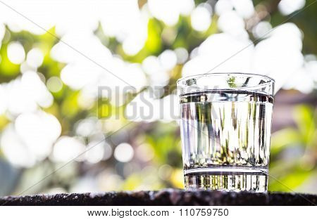Refreshing Water In Transparent Glass  Against With Greeneries Background