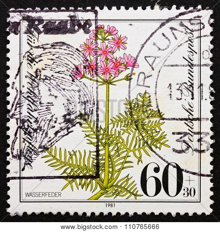 Postage Stamp Germany 1981 Water Gillyflower, Hottonia Palustris
