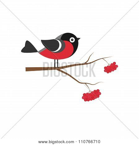 Bullfinch on the branch of mountain ash in flat style.