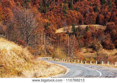 Alpine Landssape