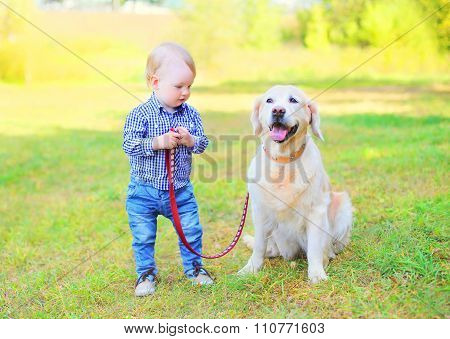Little Boy Child With Golden Retriever Dog On Grass In Sunny Day