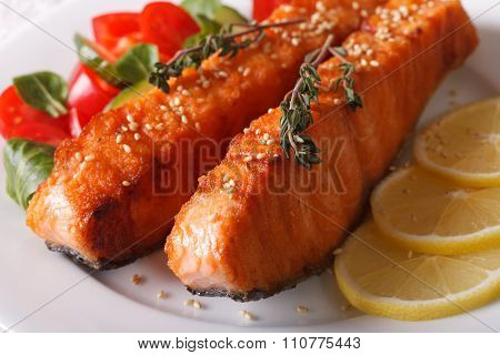 Grilled Salmon Fillet With Sesame And Salad On A Plate Macro. Horizontal