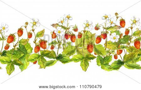 Seamless border edging with wild forest berries - strawberry field . Watercolor hand painted ribbon
