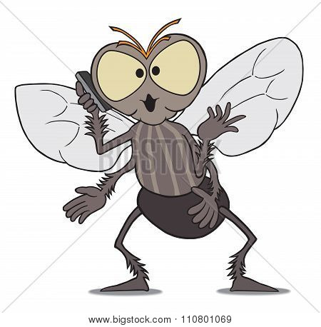 Fly on Cell Phone