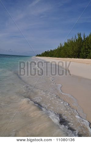 fortuna beach