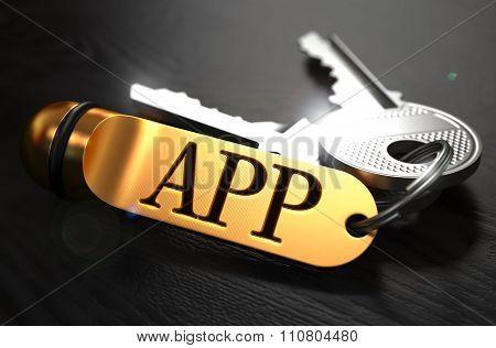 APP Concept. Keys with Golden Keyring.