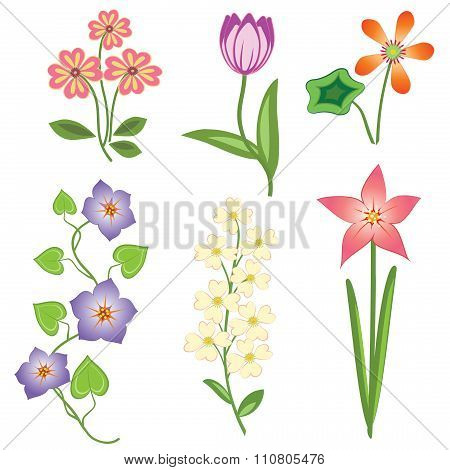 Flower set. Tulip, camomile daisy petunia orchid lily, bird cherry. Colored  floral symbols with lea