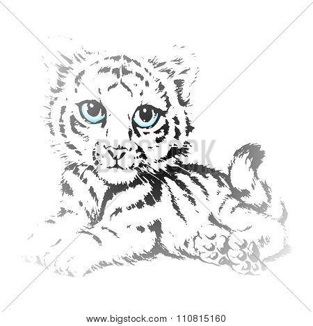 Vector Cute Tiger Cubs Pencil Sketch
