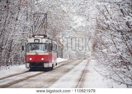 Russia tram on park