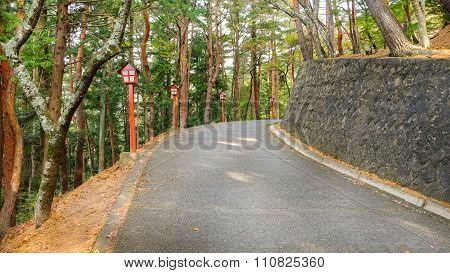 The way to Chureito pagoda
