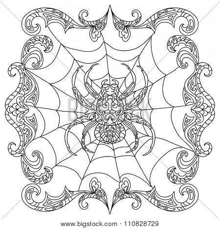 Spider zentangle coloring page isolated on white