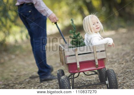 Loving Father Pulls Baby Girl in Wagon with Christmas Tree Outdoors.