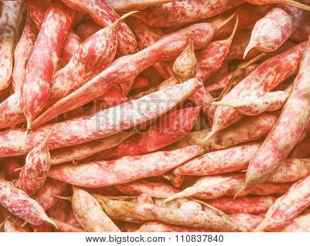 Retro Looking Cranberry Beans
