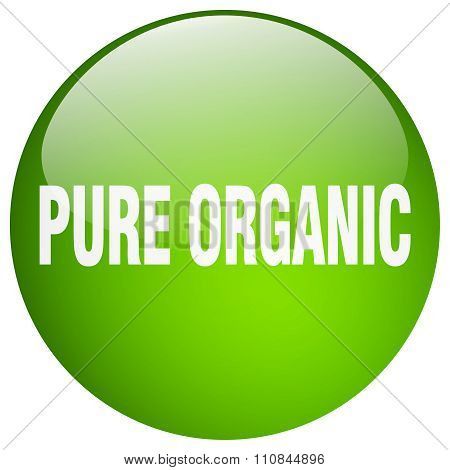 Pure Organic Green Round Gel Isolated Push Button