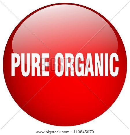 Pure Organic Red Round Gel Isolated Push Button