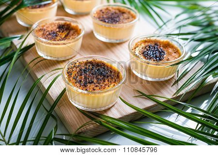 Creme brulee on wooden tray decorated with palm leaves. Traditional French vanilla cream dessert with caramelised sugar on top