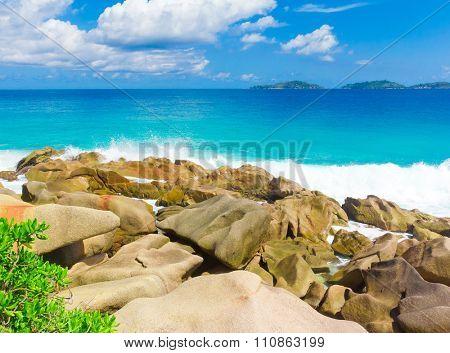 Shore Foam Stones