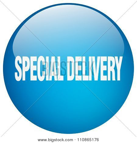 Special Delivery Blue Round Gel Isolated Push Button