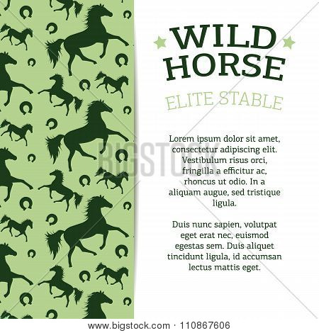 Business Or Greeting Card With The Wild Horse Image And Text.