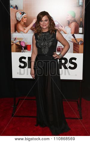 NEW YORK-DEC 8: Actress Amy Poehler attends the premiere of