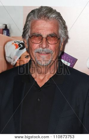 NEW YORK-DEC 8: Actor James Brolin attends the premiere of
