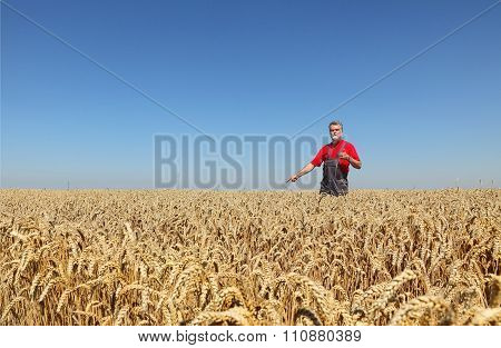 Agriculture, Farmer Gesturing In Wheat Field With Thumb Up