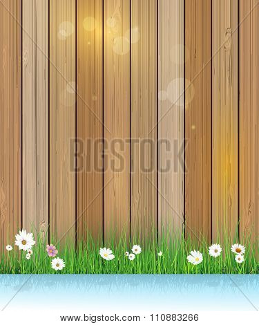 Spring nature background. Green Grass With Little White Flower over wood fence