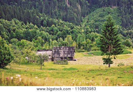 Forest House In The Mountains